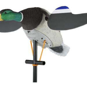 luckyduck junior Lucky Duck Junior 6 V robosorsa