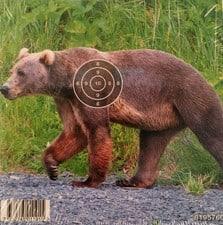 81957 60 Luftgevarstavla karhu Ilmakiväärin taulu Karhu 50 kpl