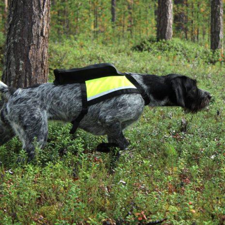 GPS liivi -Hertta size M Kaisu Seppä Viipykettu Kennel 4 (b)
